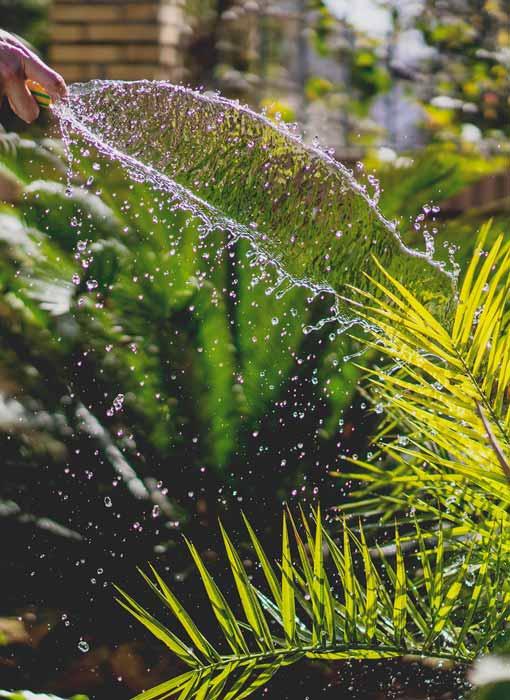 Außergewöhnlich Gartenpflege: AP Hausmeister- & Montageservice ist ihr Partner ✄ &WK_81